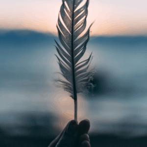 registri-akashici-espavo-profilo-spirituale-anima